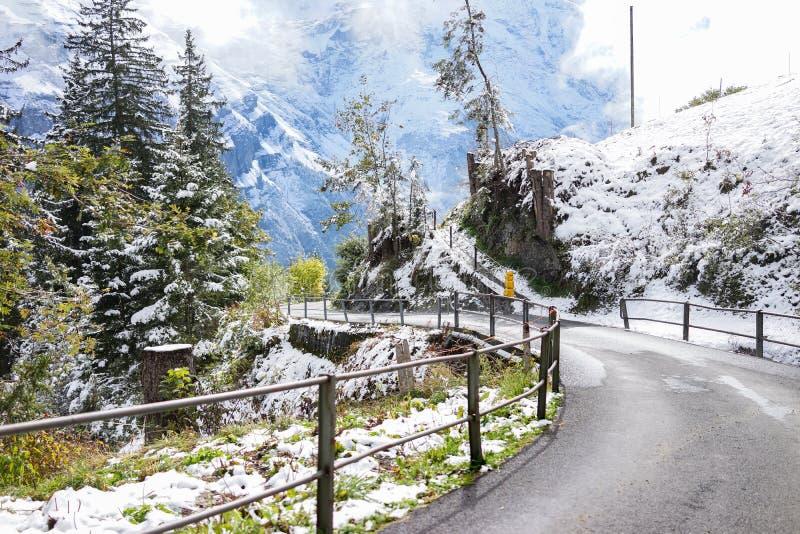 Дорога кривой горы покрытая с снегом и зелеными лугами в winte стоковое изображение