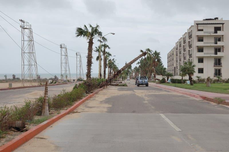Дорога к пляжу Medano стоковое фото