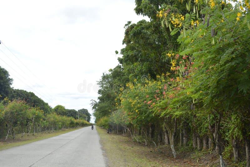 Дорога к Guihing, Hagonoy, Davao del Sur, Филиппины стоковые изображения