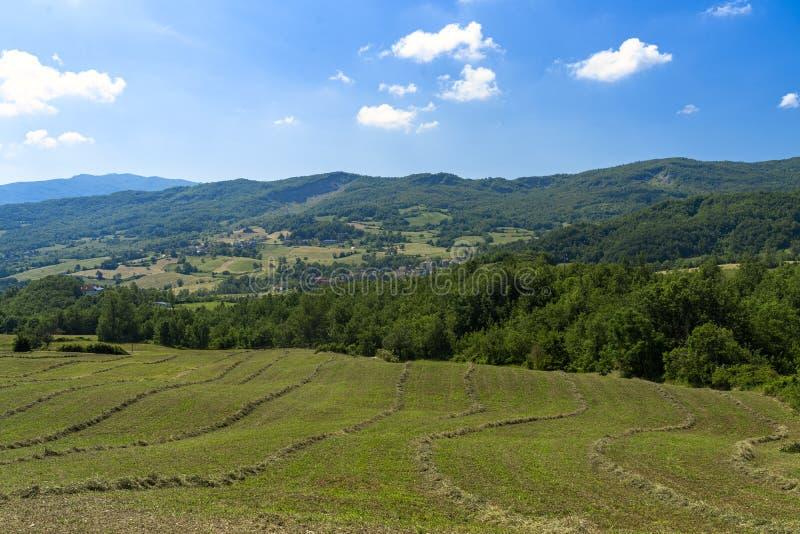 Дорога к Prato Barbieri, ландшафту Appennino стоковое изображение rf