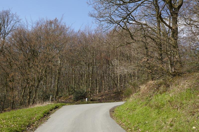 Дорога - малая дорога на крае древесины стоковые изображения