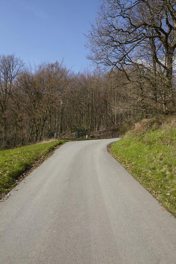 Дорога - малая дорога на крае древесины стоковое фото rf