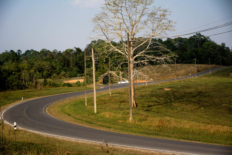 Дорога на национальном парке Khao Yai стоковые изображения rf