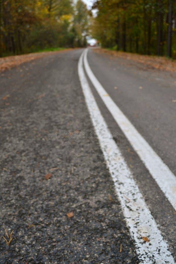 Дорога на осени стоковые изображения
