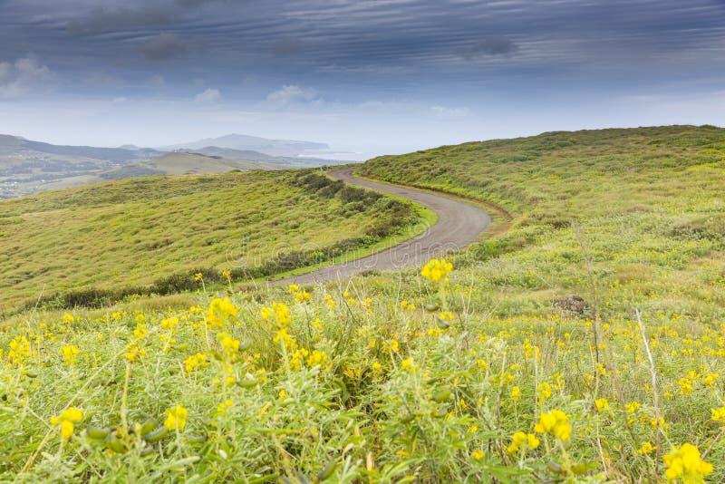 Дорога на острове пасхи стоковое изображение