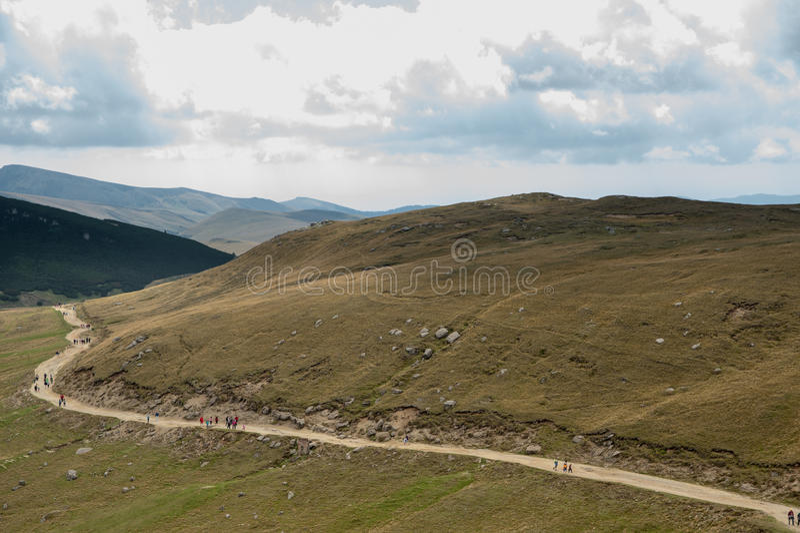 Дорога на холмах стоковые фото