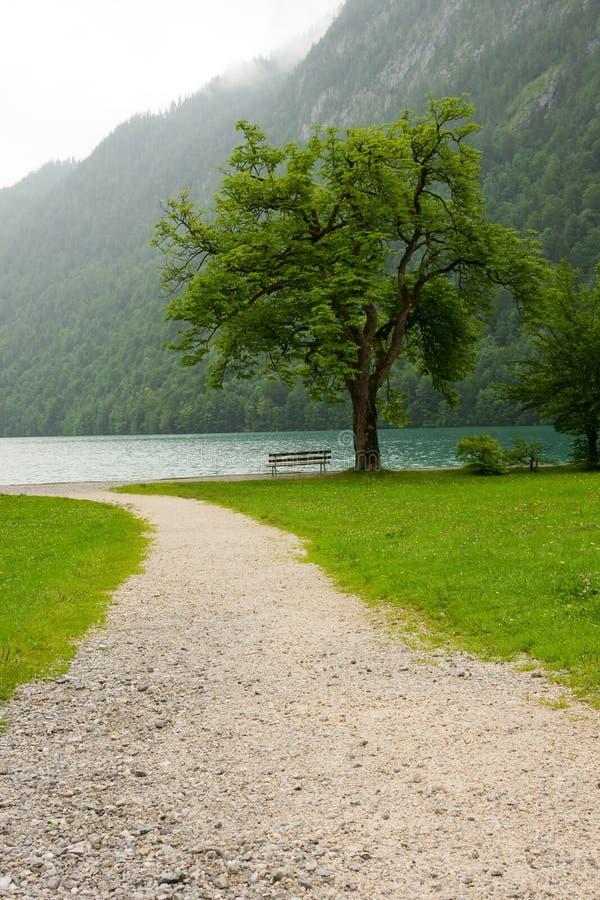 Download дорога озера к стоковое фото. изображение насчитывающей цветасто - 6855784