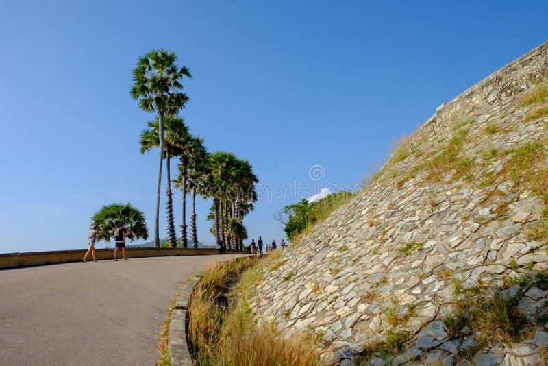 Дорога около пляжа, принимает прогулку с пальмами стоковое фото rf