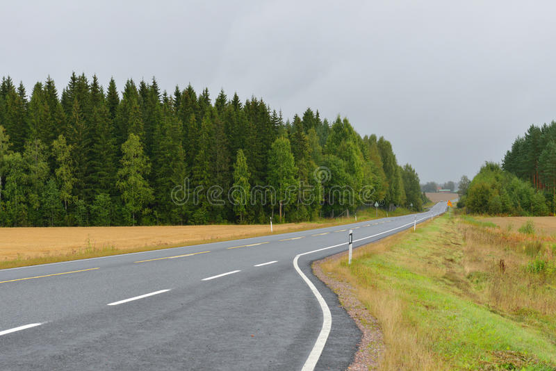 Дорога осени в помохе дождя стоковые фото