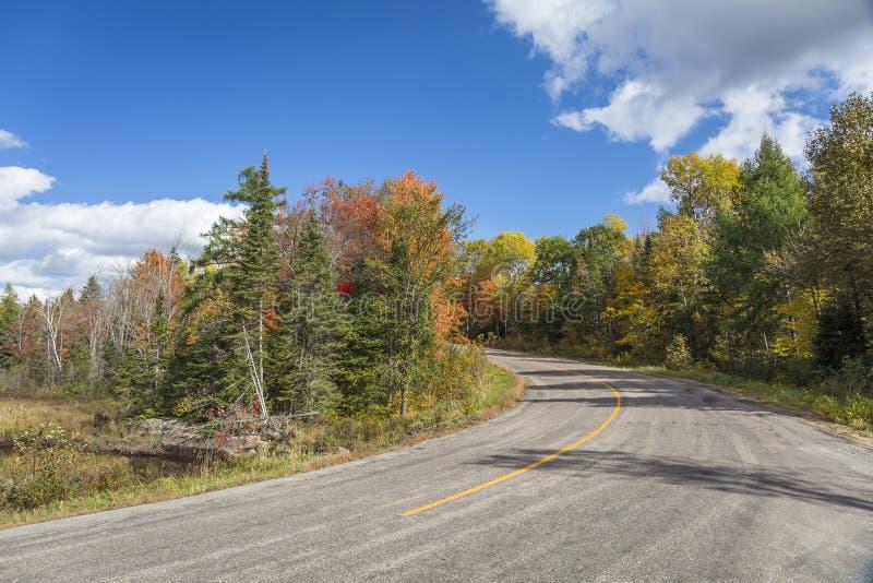 Дорога осени и цвет падения - Онтарио, Канада стоковые фотографии rf