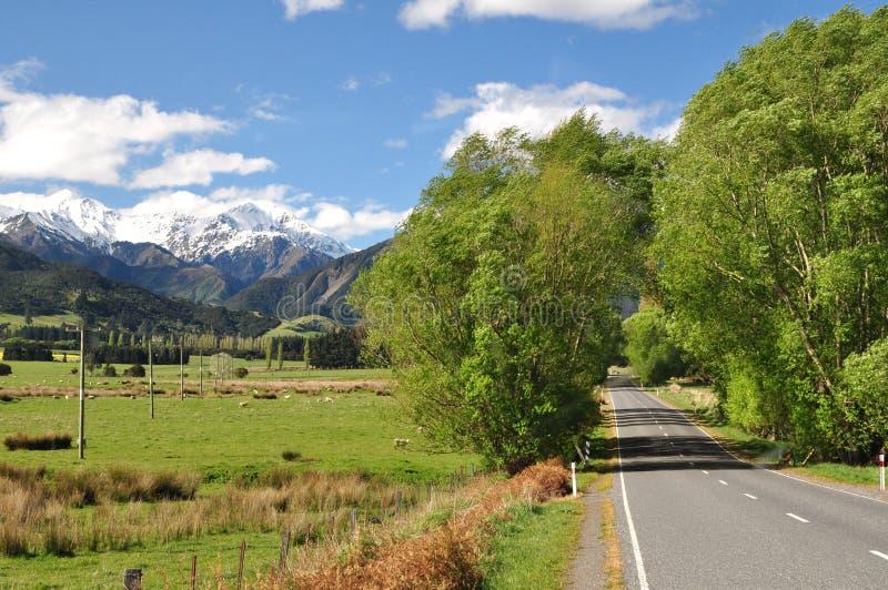 Дорога от весен Hanmer к Kaikoura стоковое изображение