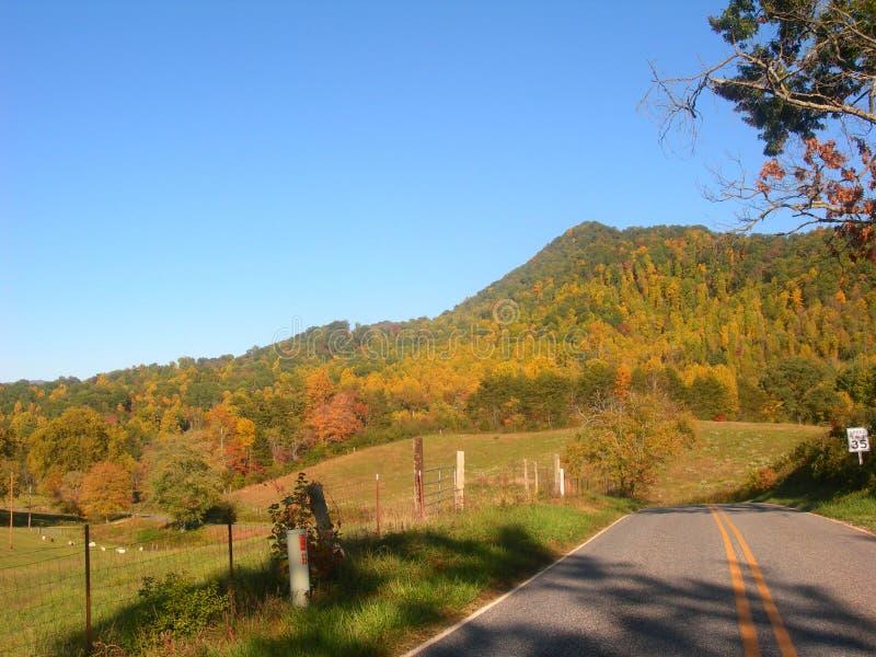 Дорога долины горы стоковое изображение rf