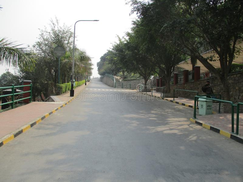 Дорога персика с деревьями стоковая фотография rf