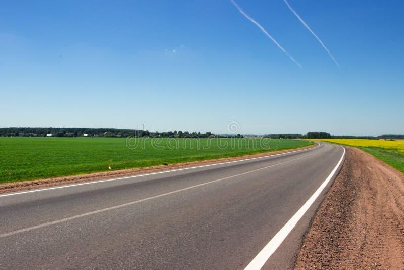 дорога поля к Дорога в середине желтого поля стоковое изображение rf