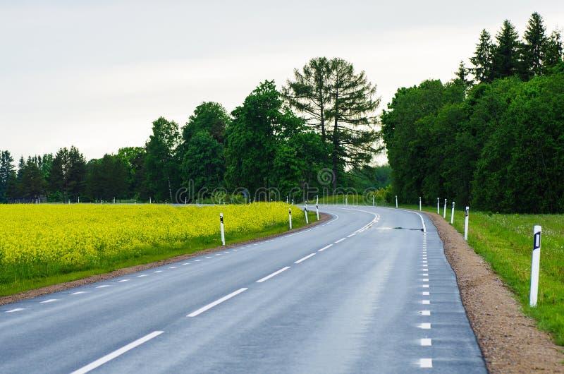 Дорога после дождя в сельской местности стоковые фотографии rf