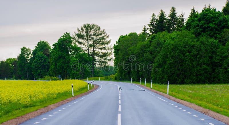 Дорога после дождя стоковая фотография