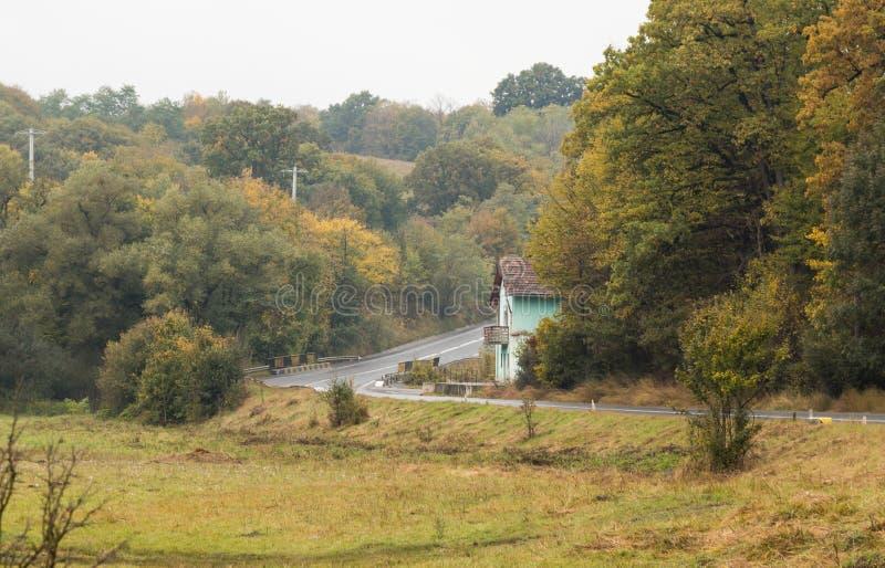 Дорога предыдущее, ненастное утро Transylvania, Румыния стоковые фотографии rf