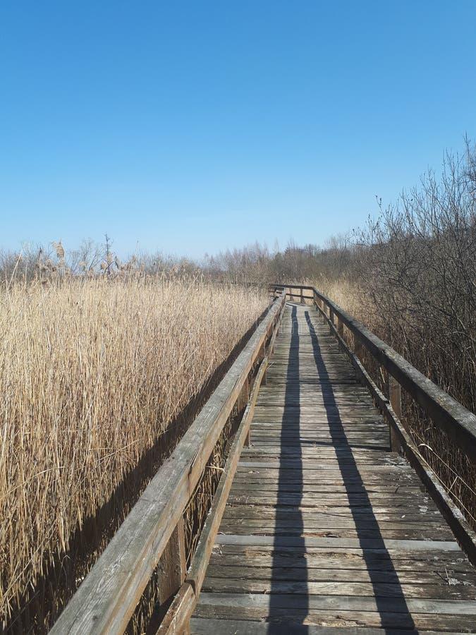Дорога призрака стоковое фото rf