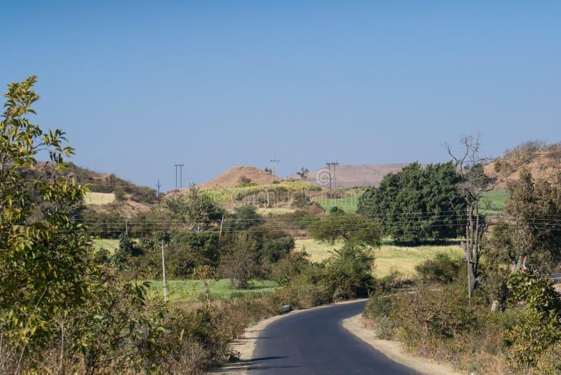Дорога пропуская через поля стоковое фото rf