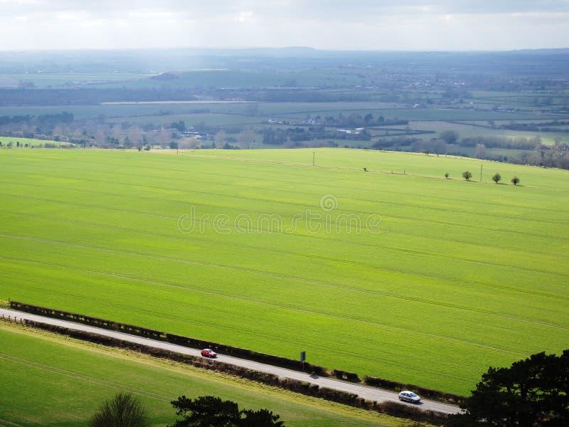 Дорога проходя между зелеными полями стоковые фотографии rf