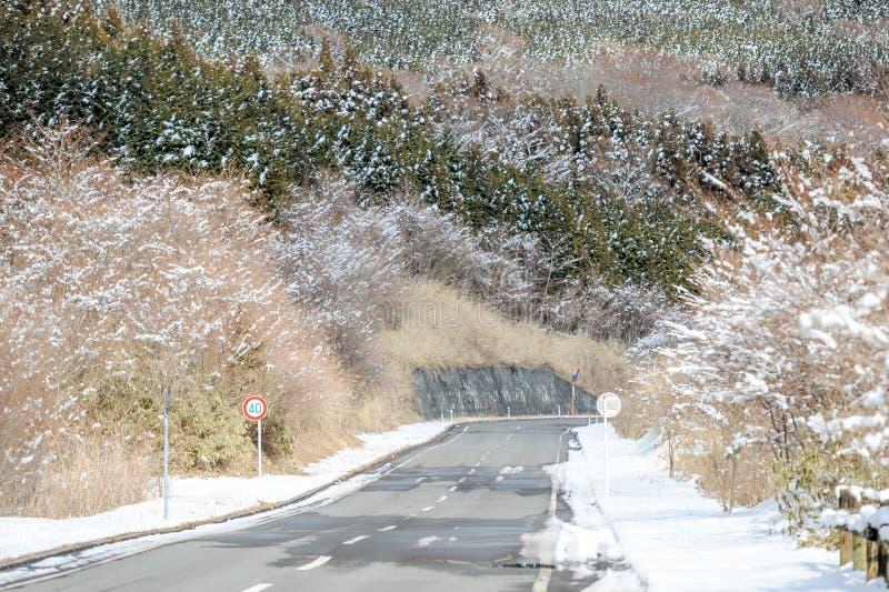 Дорога пустыни в зиме япония стоковые фото