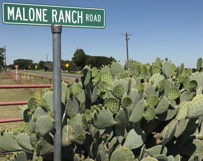 Дорога ранчо стоковое изображение rf