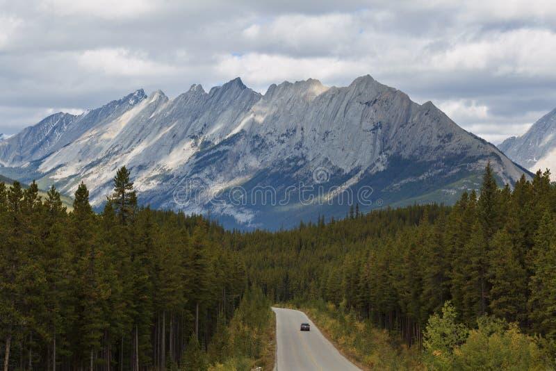 дорога ряда maligne colin Канады стоковые изображения rf