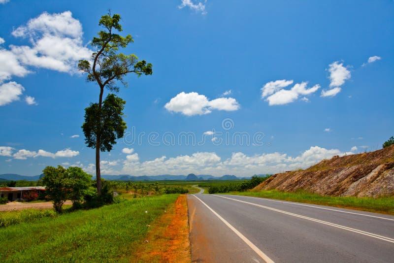дорога сельский s Малайзии стоковые изображения rf