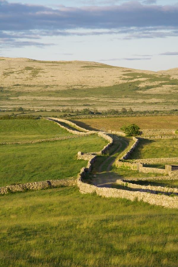 дорога сельской местности стоковое фото rf