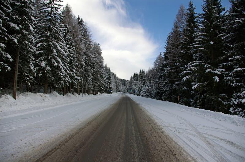 дорога снежная стоковые фотографии rf