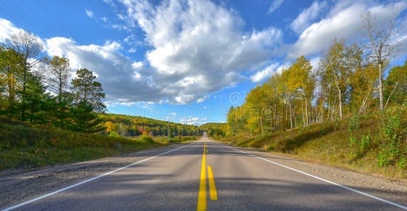 Дорога солнечности, одноточечная перспектива вниз с шоссе страны в лете стоковое изображение