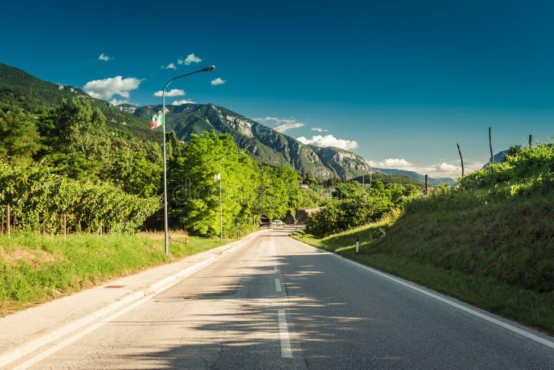 Дорога среди зеленых виноградников к горам стоковые фото