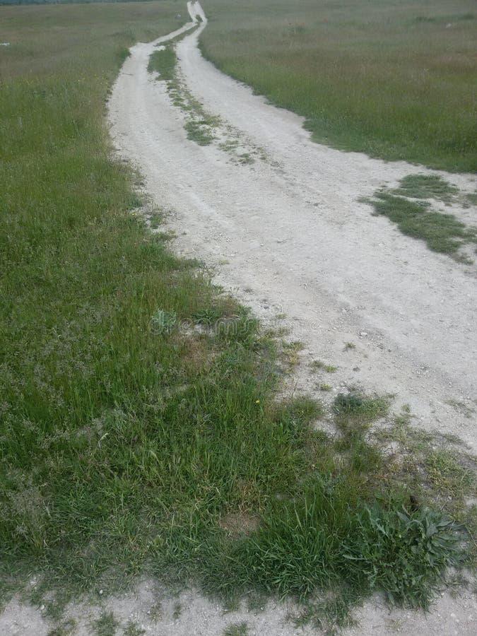 Дорога травы стоковое изображение rf
