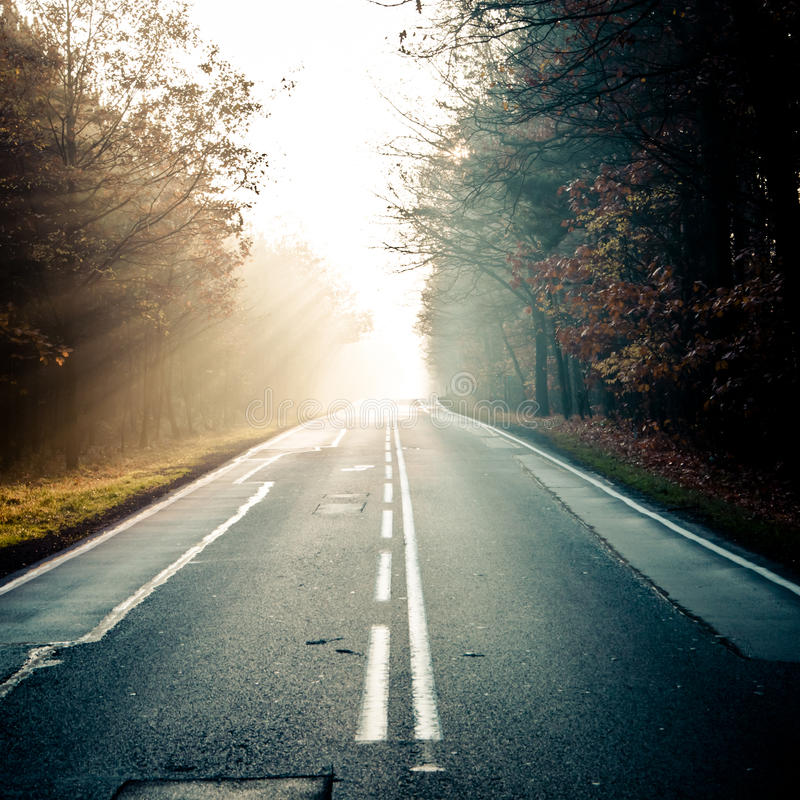 дорога тумана к стоковая фотография rf