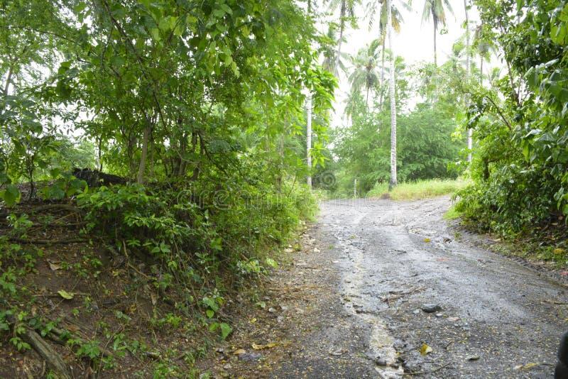 Дорога фидера водя к реке Miral, Bansalan, Davao del Sur, Филиппинам стоковые фотографии rf