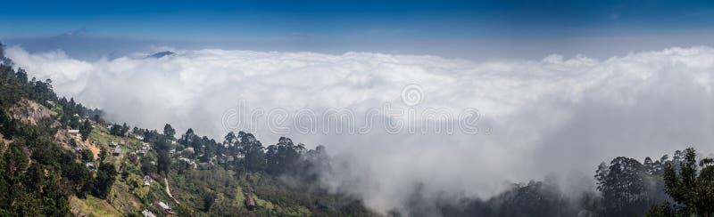 Дорога через золотой лес с туманом стоковые изображения