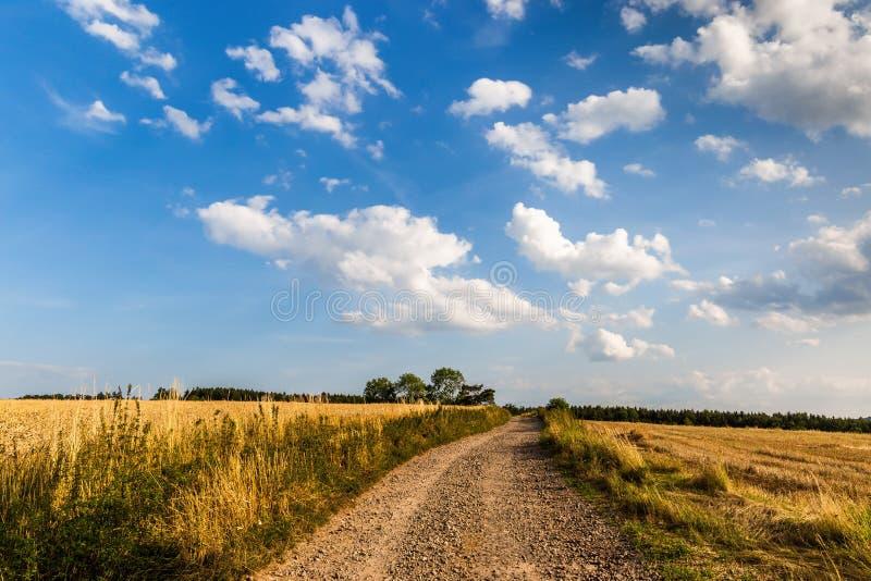 Дорога через поле и облака на голубом небе в летнем дне стоковые изображения