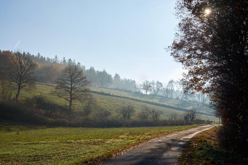 Дорога через поля, полдень и помох стоковое фото