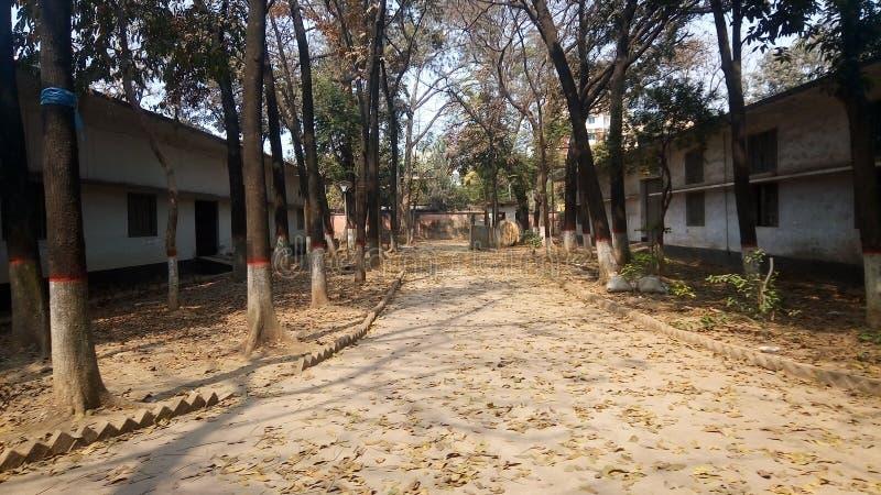 Дорога школы стоковое изображение