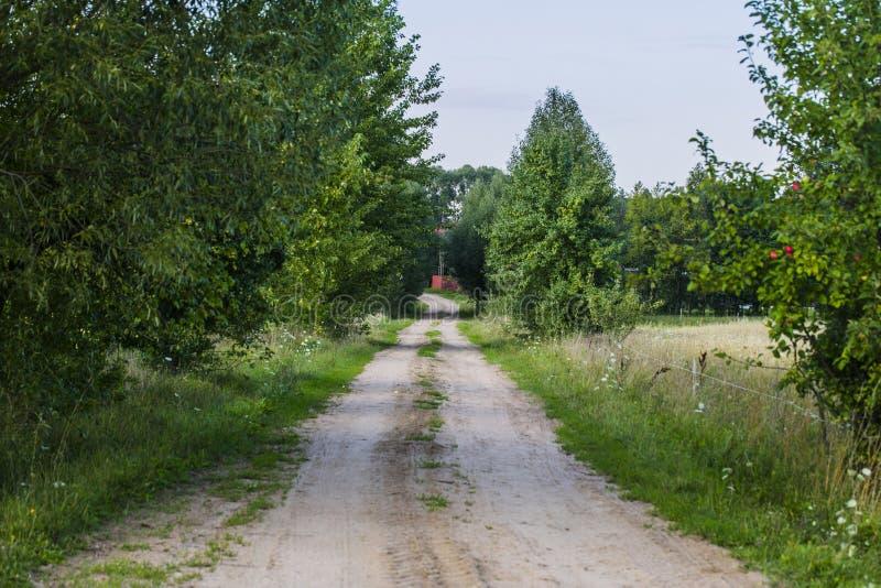 Дорога Sandy водя к деревне стоковые фотографии rf