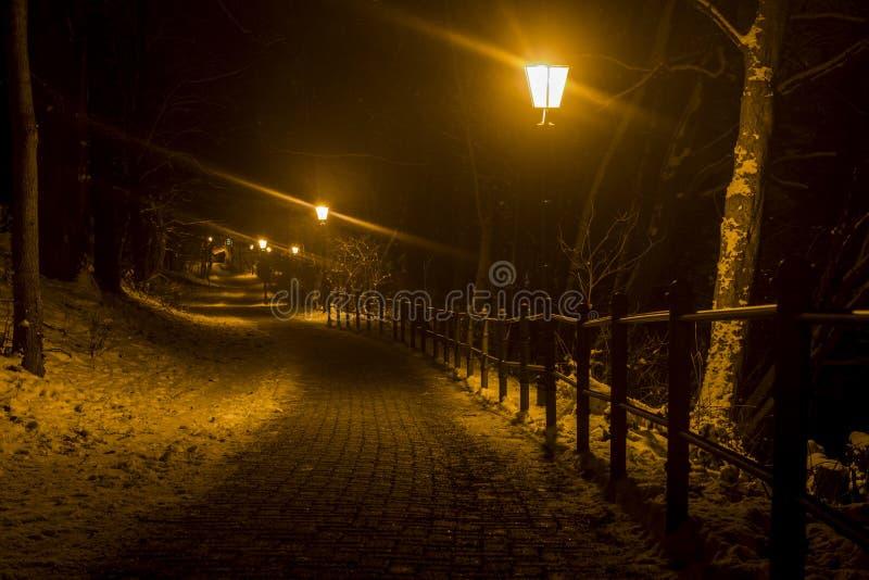 Дорога Wernigerode замка в ноче зимы стоковое изображение