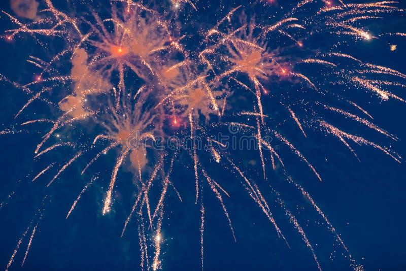 Дорогие праздничные фейерверки освещают в ночном небе стоковые изображения rf