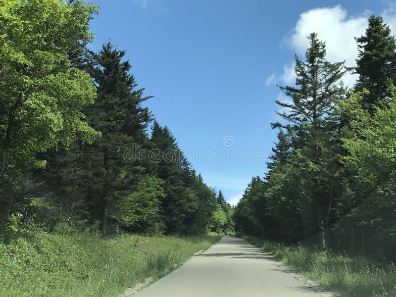 Дороги горы стоковая фотография