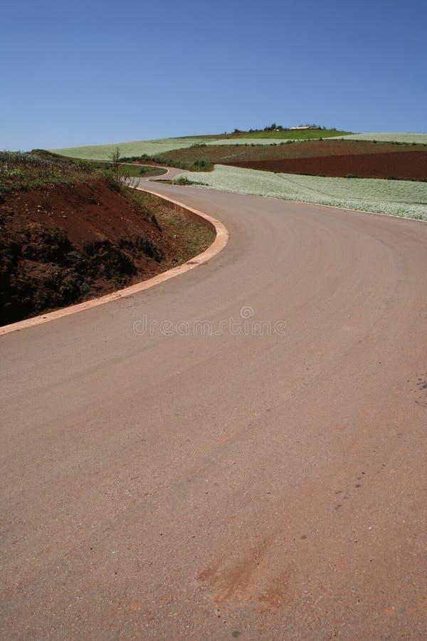 дороги земли стоковое фото