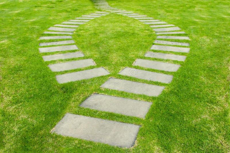 Дорожка на зеленой траве стоковая фотография
