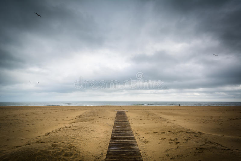 Download Дорожка на пляже в Virginia Beach, Вирджинии Стоковое Фото - изображение насчитывающей пасмурно, bluets: 81801304