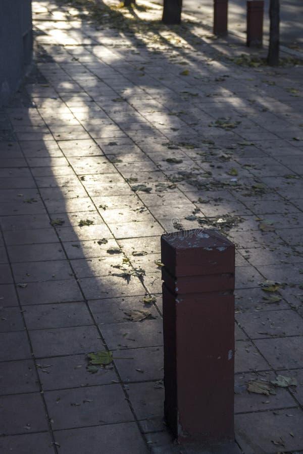Дорожки на тенистой стороне улицы стоковая фотография rf