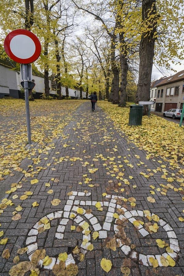 Дорожный знак велосипеда на земле на парке стоковые фотографии rf