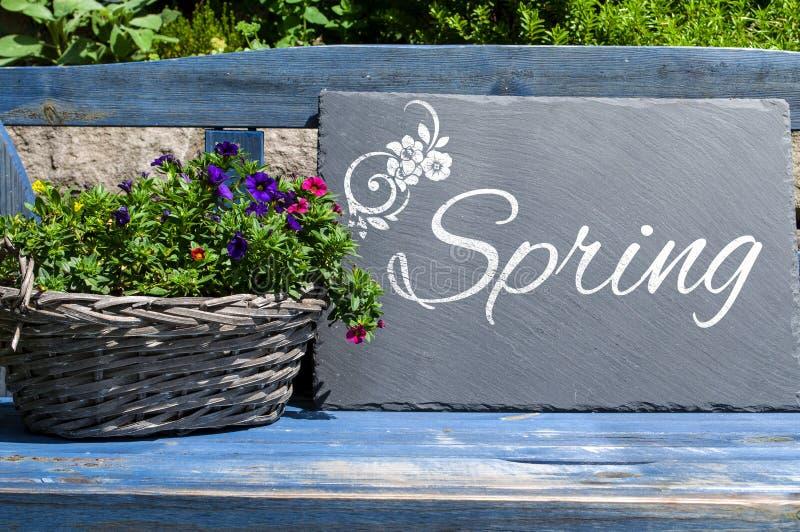Доска в саде с цветками и временем весны стоковая фотография rf