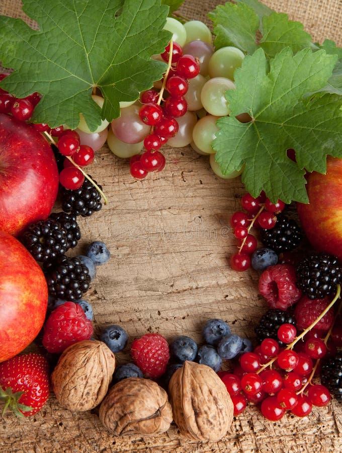 доска fruits серии thankgiving стоковое изображение